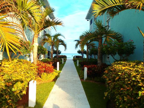 Coral Stone Club: Walkway to the pool