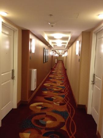 Residence Inn Arlington Capital View: hallway