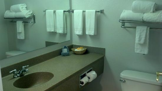 La Quinta Inn & Suites Springfield Airport Plaza : Bathroom, simple but clean