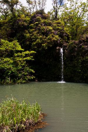 Pua'a Ka'a State Park: Falls at Pua'a Ka'a