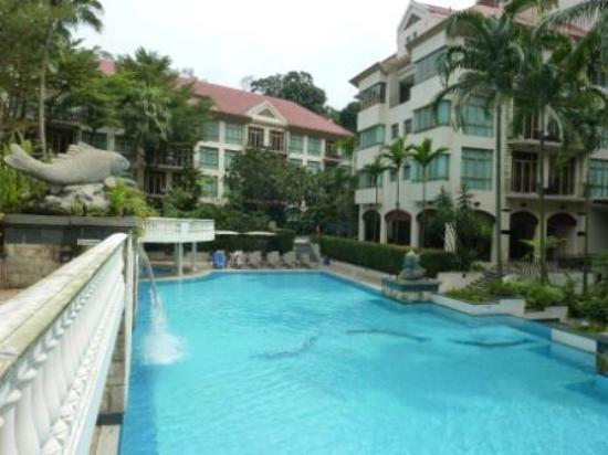 Treetops Executive Residences Singapore: Pool area