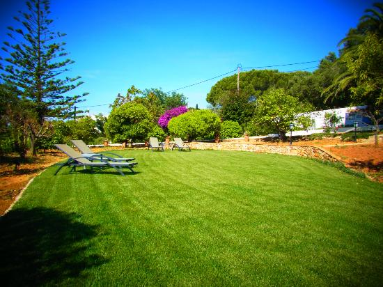 Quinta Bonita Luxury Boutique Hotel: view of lawn