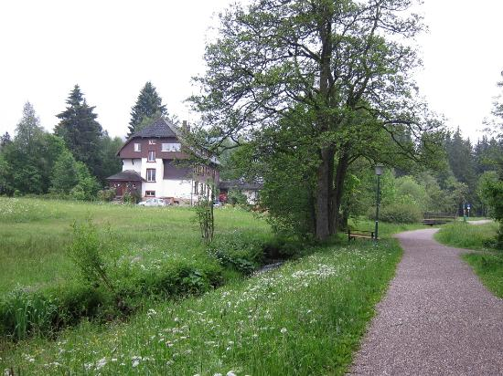 Hotel am Bach, gleich nahe dem Haus einladend zum Wandern Juni 2012