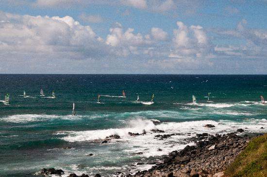Paia, HI: Wind surf in the afternoon