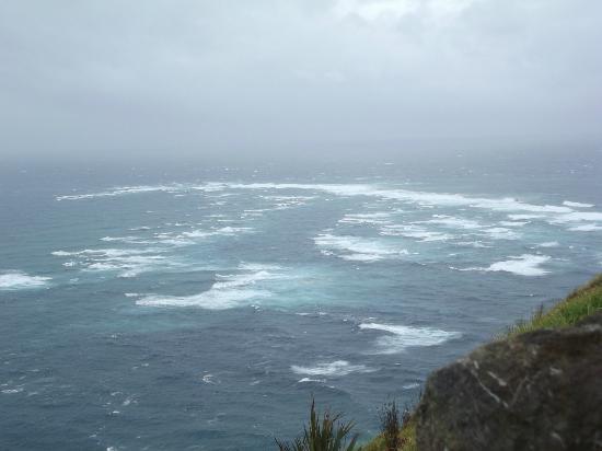 Cape Reinga: where  the Tasman Sea and Pacific Ocean meet-awesome