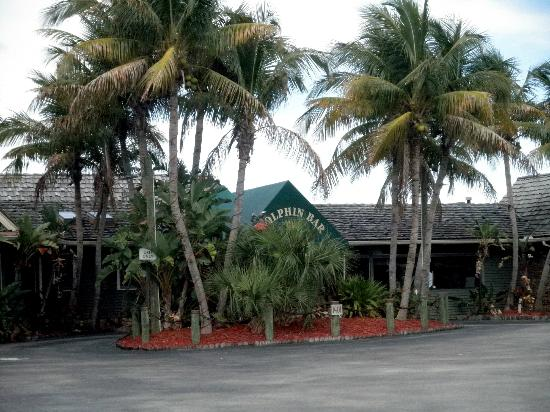 Dolphin Bar & Shrimp House Front View
