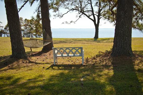 Mulberry Hill: Lawn view of Albemarle Sound