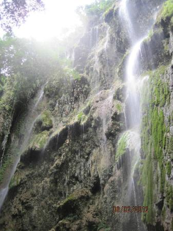 Oslob, Filipiny: isn't that gourgeous?