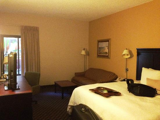 Hampton Inn Jupiter/Juno Beach: room