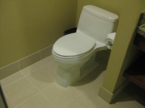 Renaissance Las Vegas Hotel: toilet