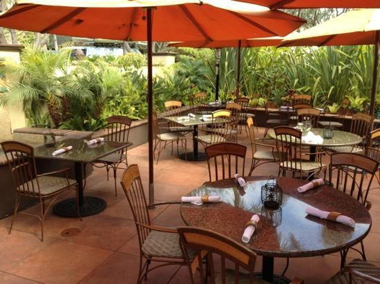 Tommy Bahama S Island Grille The Patio