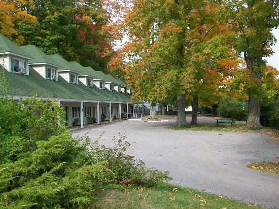 Maple Lane Resort: Maple Lane