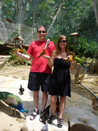 The Enchanted Garden : The Aviary...great photo ops