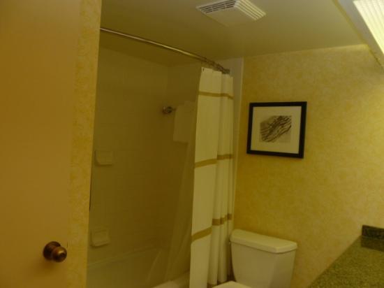 BWI Airport Marriott: Shower