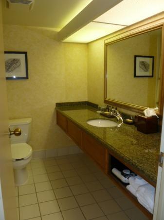 BWI Airport Marriott: vanity