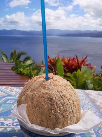 Naveria Heights Lodge: fresh coconut and stunning view