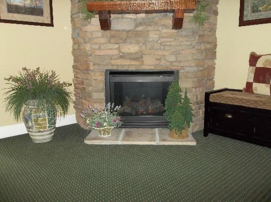 Summit Manor Condominiums: Fireplace