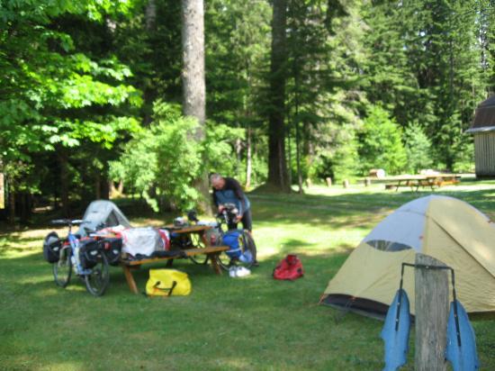 Sayward Valley Resort Fisherboy Park: campsite