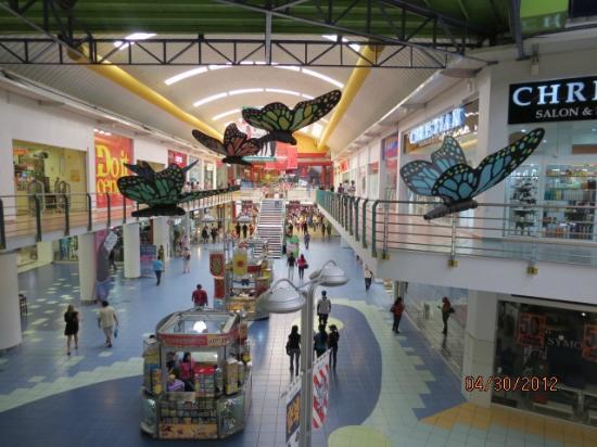 Panama RoadRunner Transportation : View in Allbrook Mall