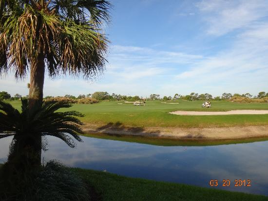 Villas of Grand Cypress : Golf Course