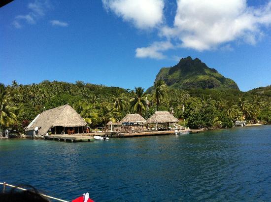 Bora Bora Yacht Club : Vue du Yacht Club Bar Restaurant in Bora Bora