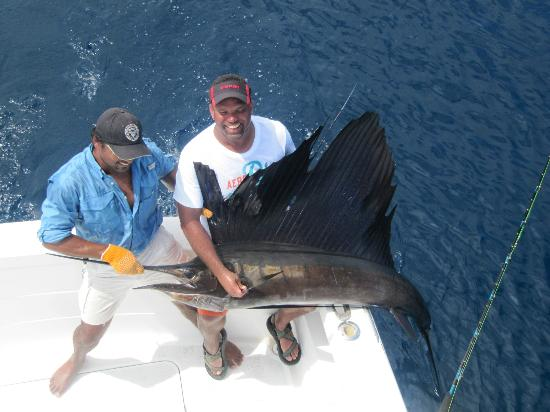 Costa Rica Sport Fishing on the Predator: Caught on June 7, 2012 and released :)