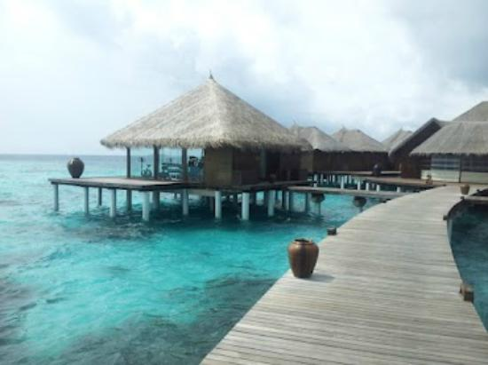 Coco Bodu Hithi: The gym and spa
