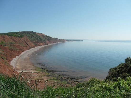 South West Coast Path National Trail: jurrasic coast ,sidmouth in distance
