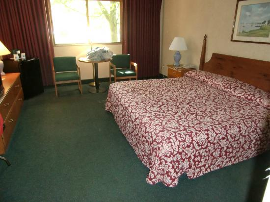 Commodores Inn : Room looks brighter because of flash