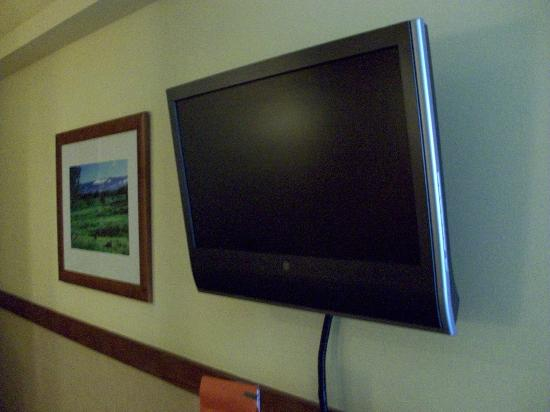 The Equus Hotel: TV