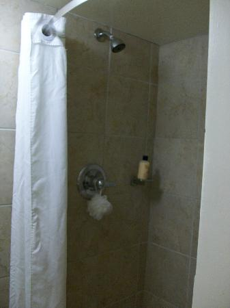 The Equus Hotel: Shower stall