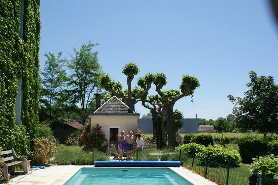 Chateau des Grandes Vignes: View from pool area