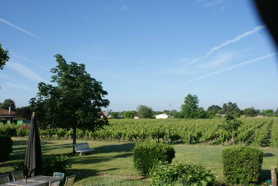 Chateau des Grandes Vignes: View from Room