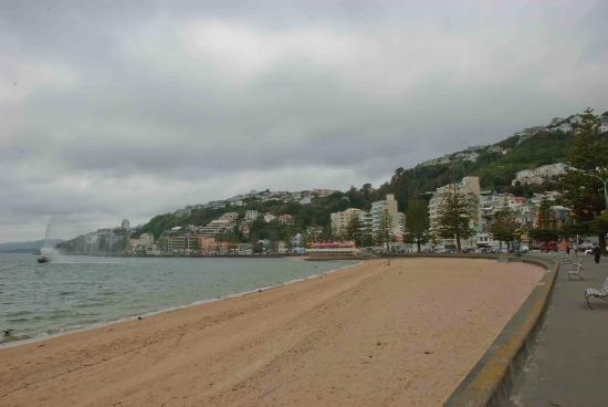 Oriental Bay: The beach on a gloomy day