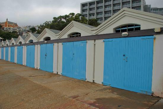 Oriental Bay: Beach-houses in Wellington