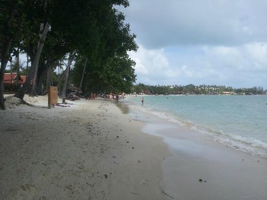 Marine Bungalows : Chaweng Beach