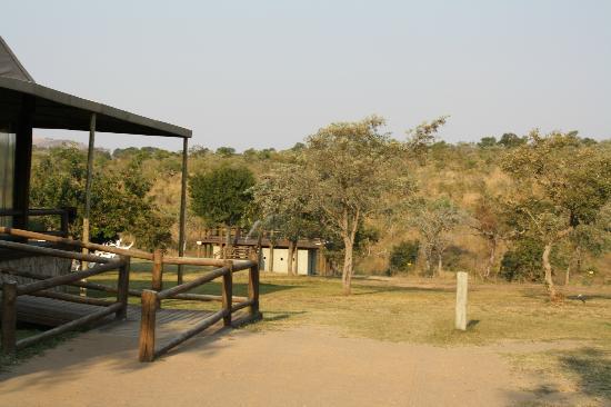 Nkambeni Safari Camp: Cours