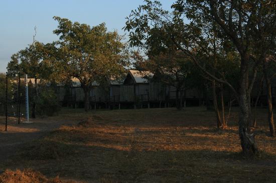 Nkambeni Safari Camp: Rangés de tentes