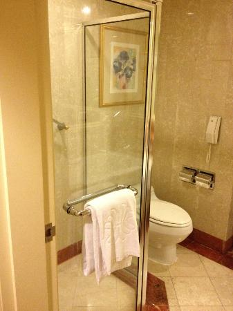 Grand Hi-Lai Hotel Kaohsiung : Very clean toilet