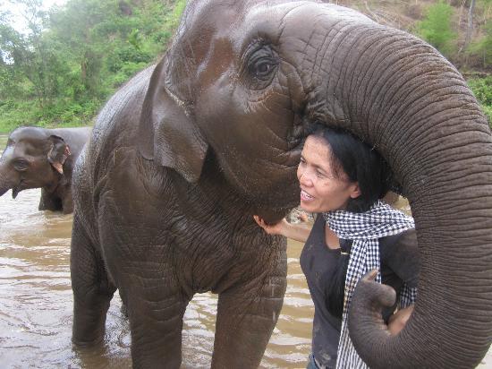 Elephant Nature Park: Lek with the baby elephant