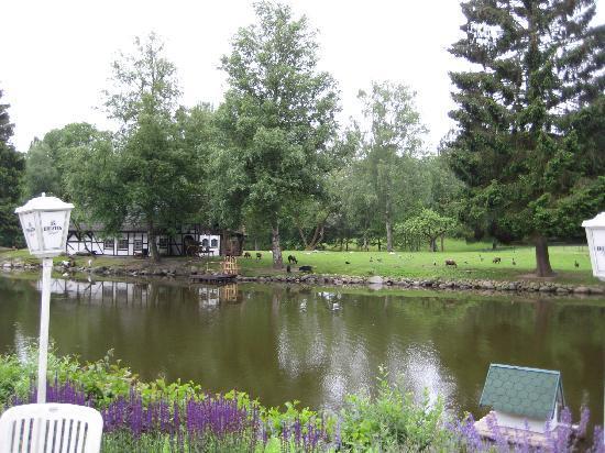 Forsthaus Seebergen: Der See