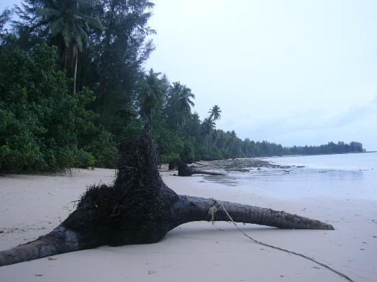 Kantary Beach Hotel Villas & Suites Khao Lak : beach