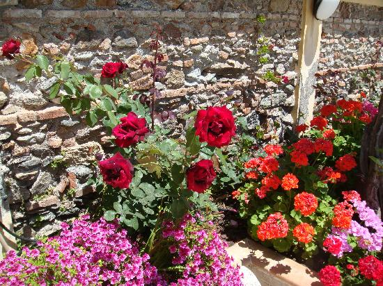 Ali Terme, อิตาลี: Flowers around bath