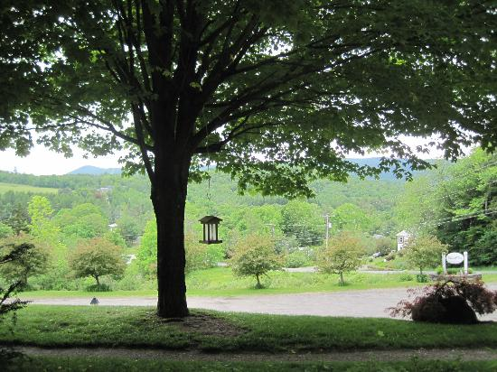 Deerhill Inn: One of many beautiful views