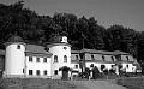 Stary Jicin, Tschechien: zamecek