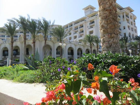 Stella Di Mare Beach Hotel & Spa: Jardins magnifiques très soignés