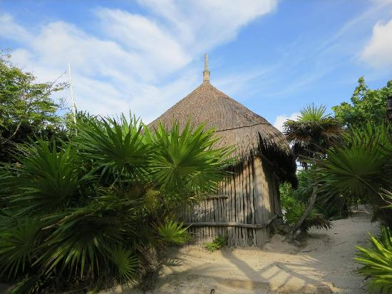 Playa Esperanza: Cabins