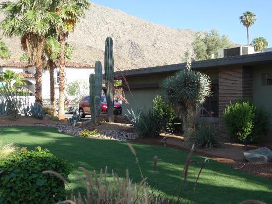 Desert Riviera Hotel: Aussenanlage