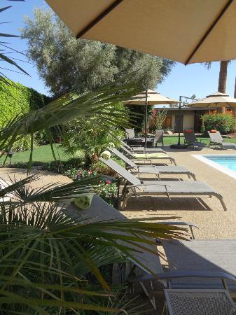 Desert Riviera Hotel: Poolbereich - Entspannung pur