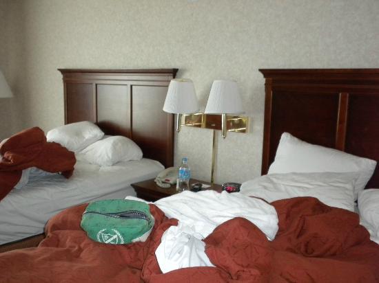 Solstice: beds